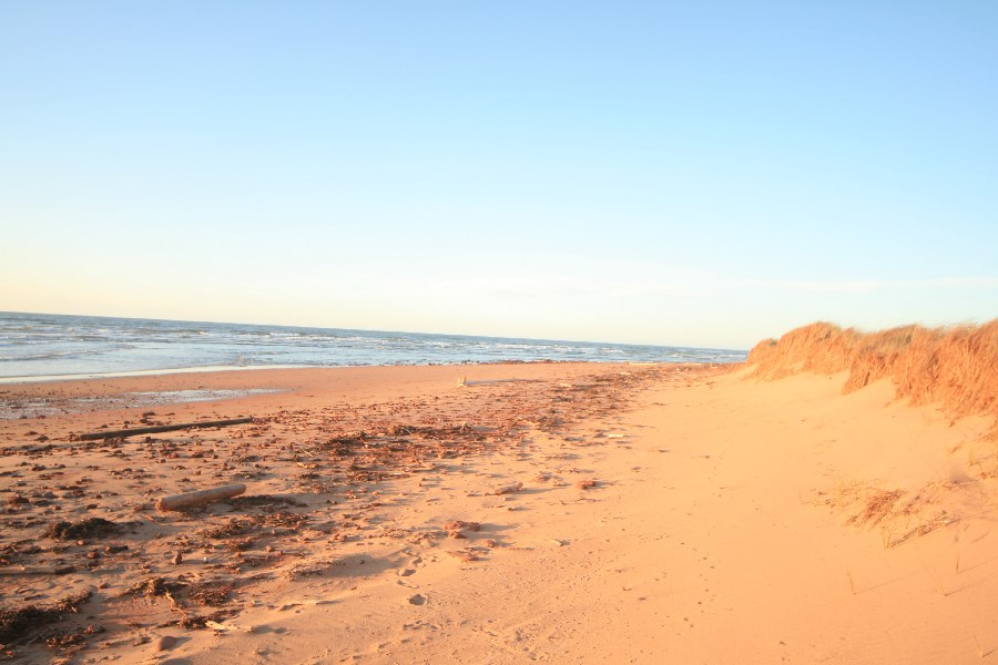 King's Cove - Luxury Beachfront and Waterfront Rentals by Your PEI ...