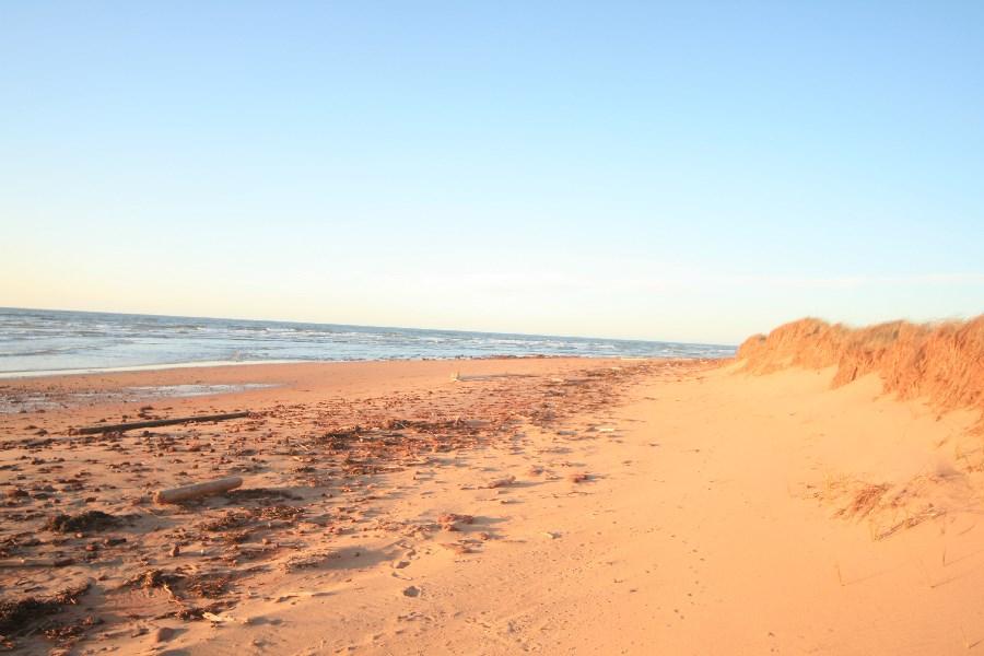 63_beach2.jpg
